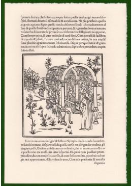 Il giardino di Poliphilo