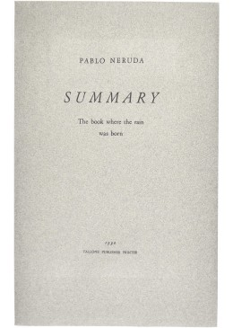 Summary, the Book where the Rain was born - Pablo Neruda